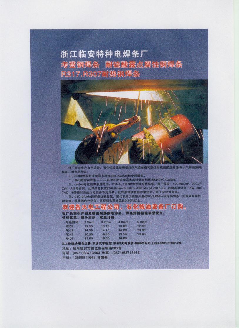 浙江临安特种电焊条厂