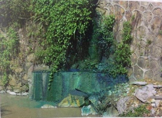惠州市某化工企业染料泄漏排入响水河