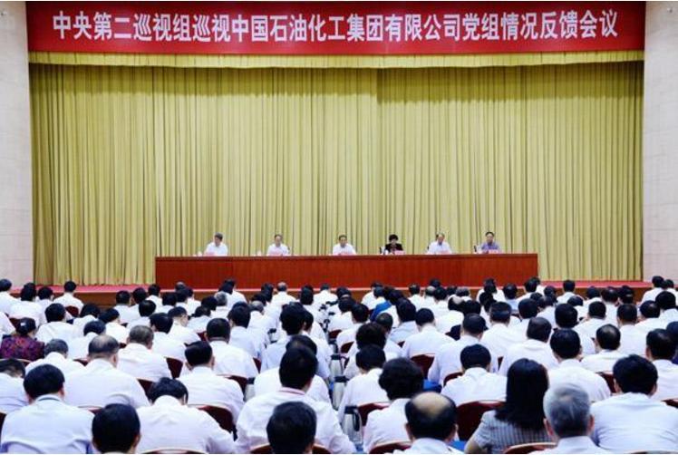 中央第二巡视组向中国石油化工集团有限公司党组反馈巡视情况