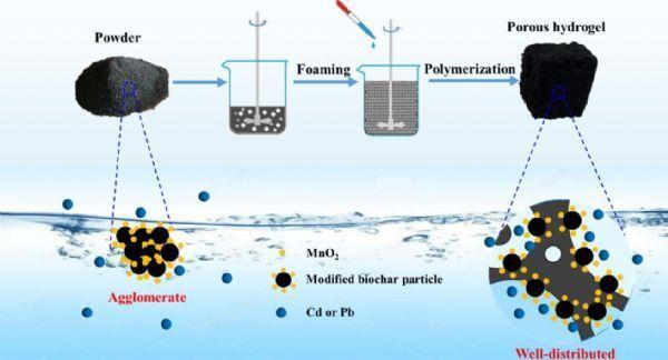 生物炭的应用研究取得新进展