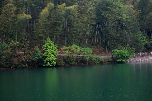 无锡旅游景点 宜兴竹海