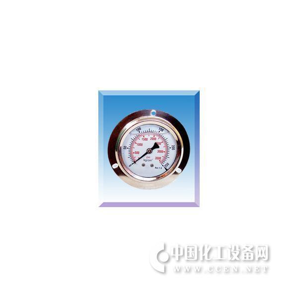轴向带边耐震不锈钢压力表